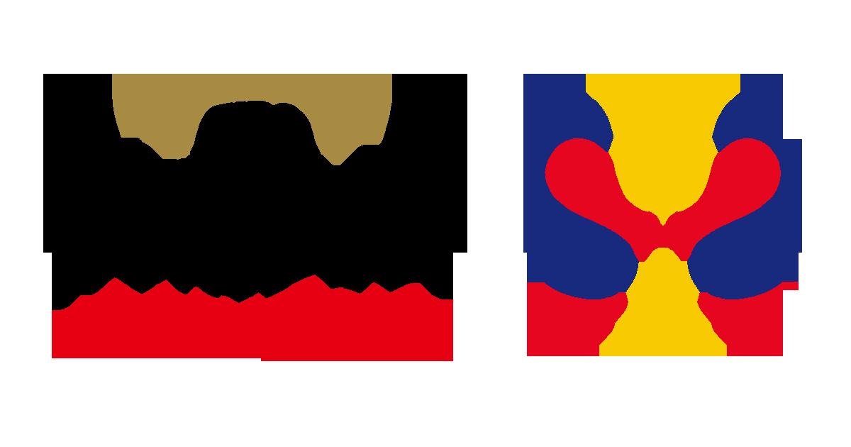 23 листопада збірна України зіграє зі збірною Швеції